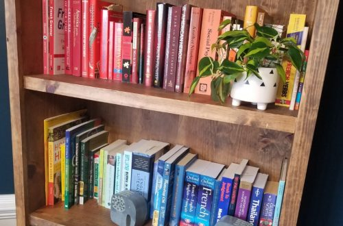 rainbow bookshelf - add color to your home without spending money