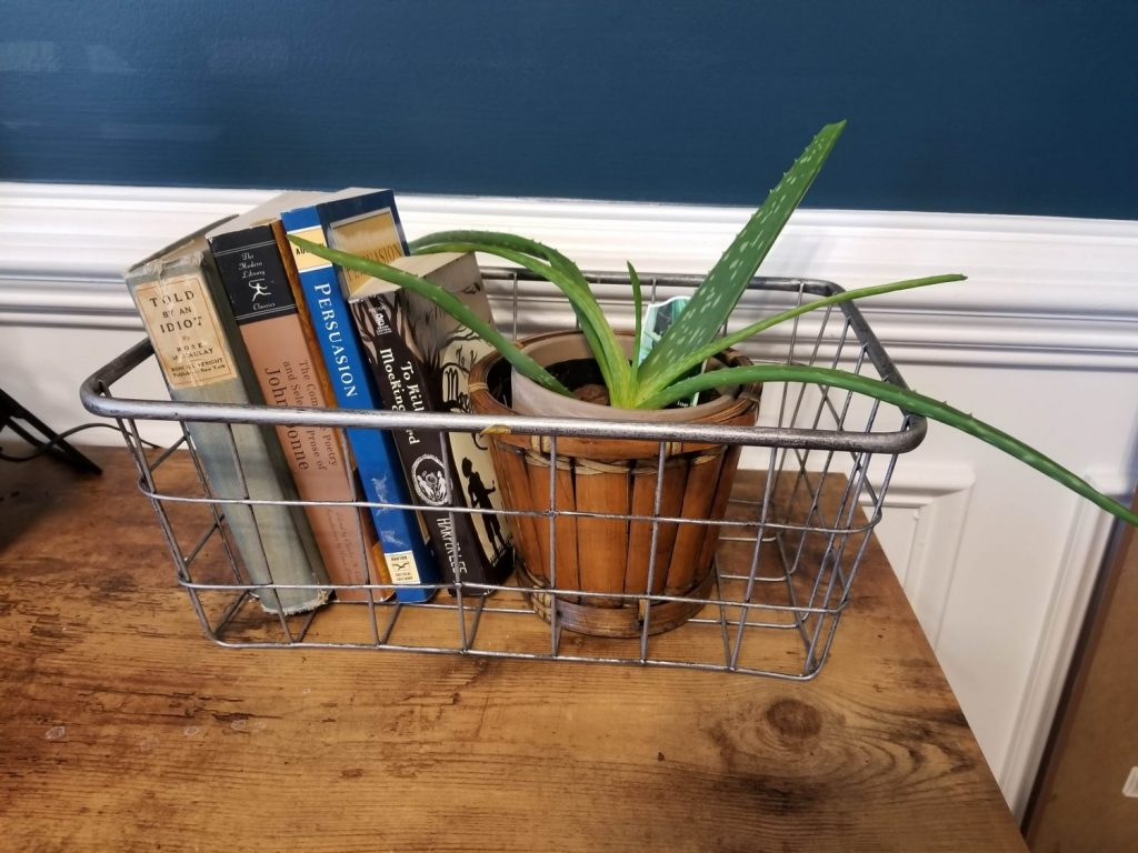 small aloe vera plant in a wooden flower in pot in a metal basket with books