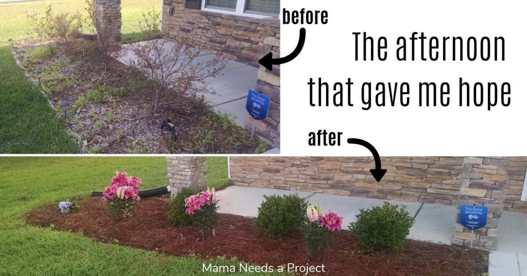 The afternoon that gave me hope, before and after photos of flower bed