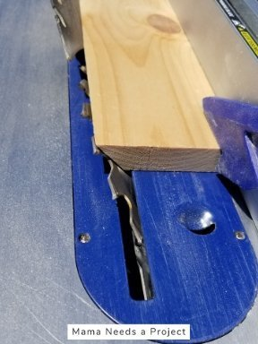 cutting pine on table saw at an angle