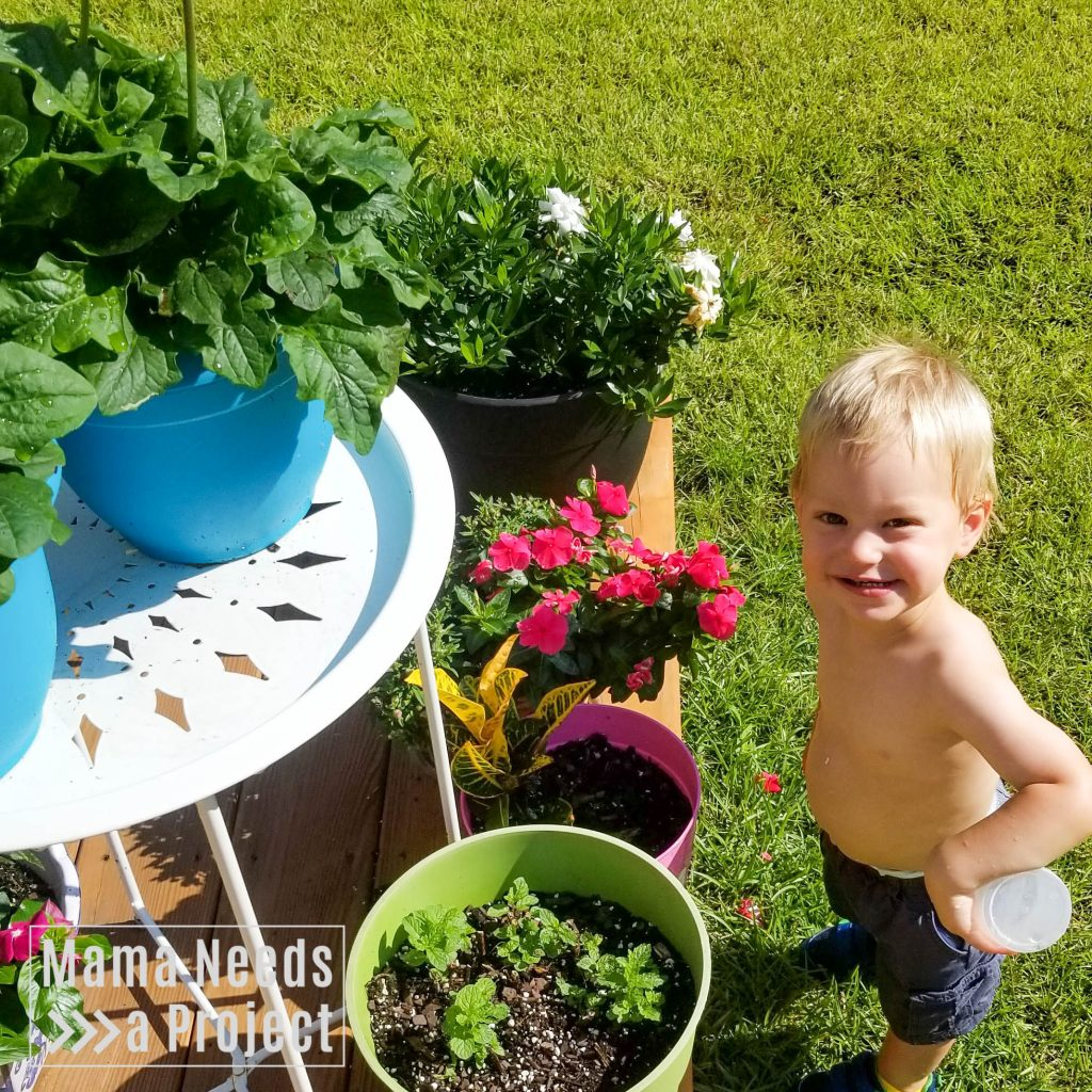 gardening with a toddler, toddler and flowers