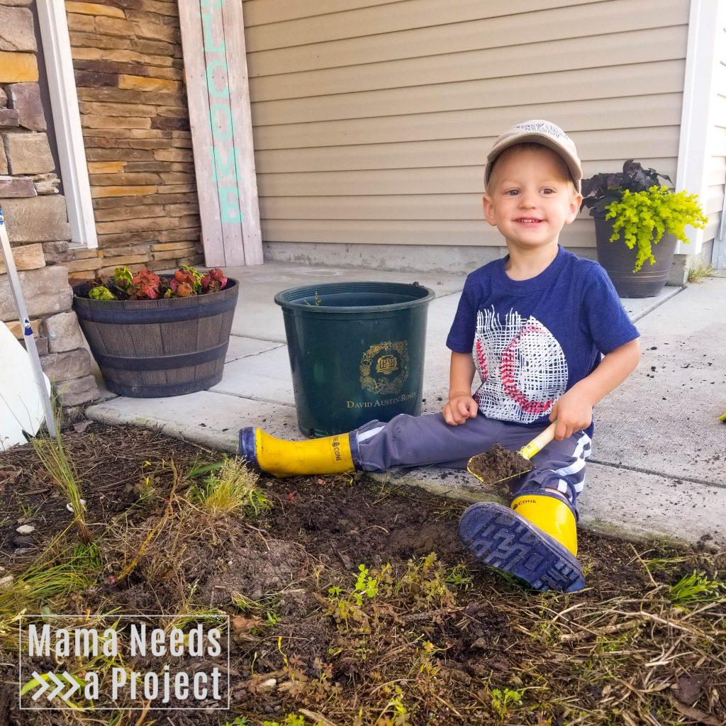 gardening with a toddler, toddler using gardening tools, pulling weeds