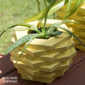 aloe planter, diy pineapple planter woodworking tutorial