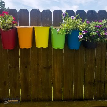 flowers planted in upcycled plastic nursery pots mounted on fence