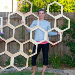 Honeycomb Trellis ready to be mounted on fence