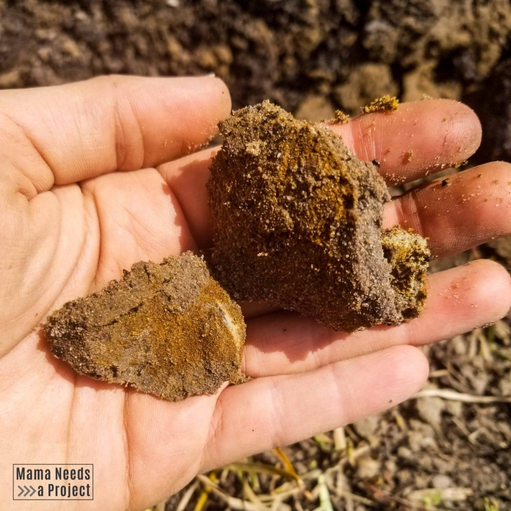 compacted sand and red clay soil in a hand