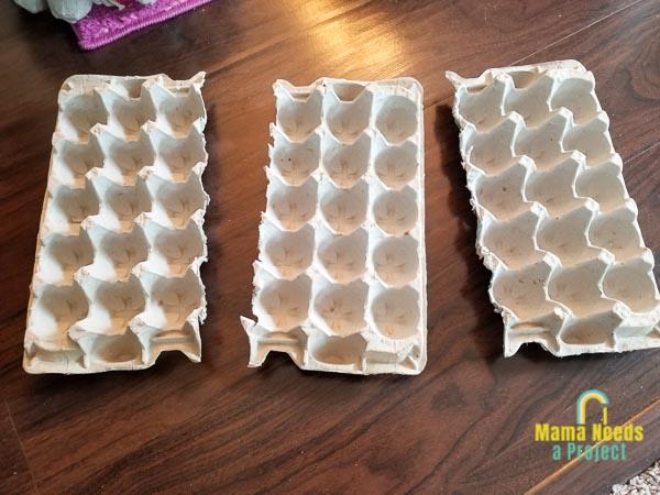egg trays cut in half