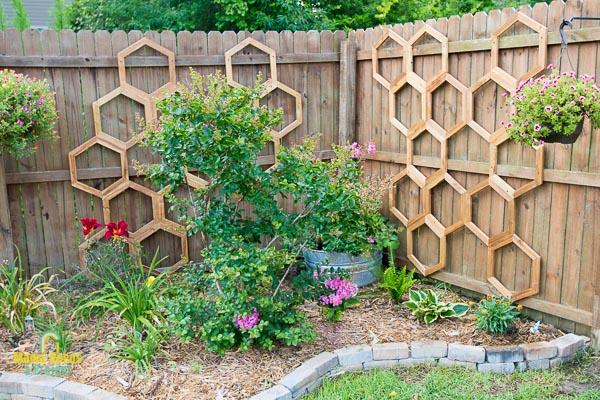 diy garden trellis, honeycomb garden trellis against a fence in a small garden