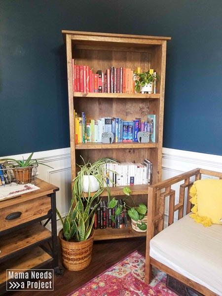 colorful rainbow bookshelf