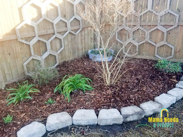 add thick layer of mulch to flower bed