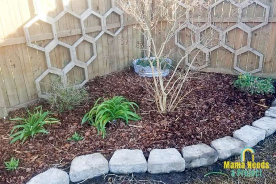 prepare garden for spring, flower bed with new mulch, stone border, plants early spring garden