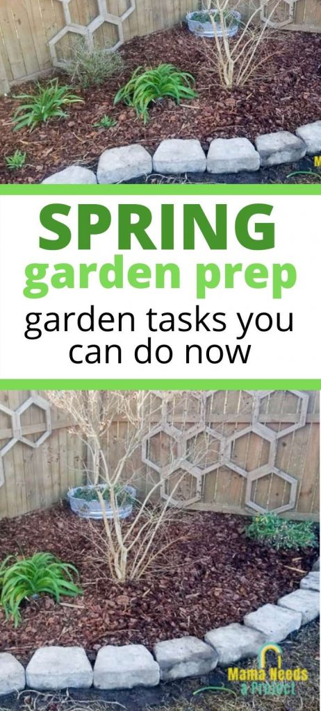 spring garden prep, garden tasks you can do now