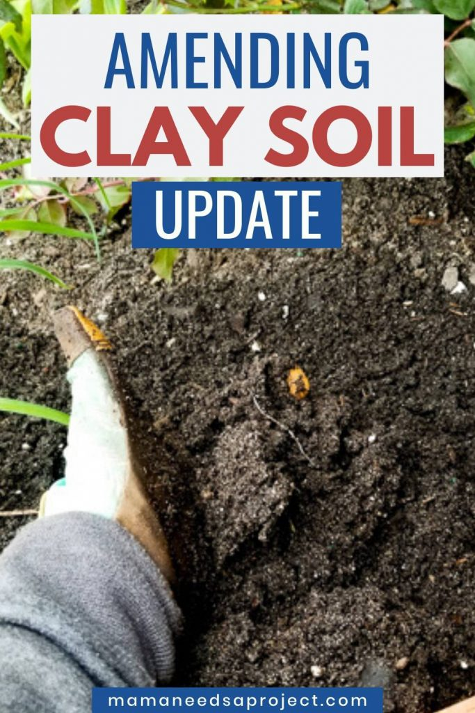amending clay soil update image of hand in black soil
