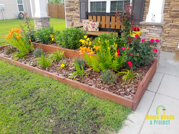 diy wood raised flower bed with blooming flowers and poorly growing grass in front of flower bed