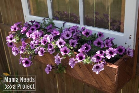 fence mounted flower box unique garden idea close up