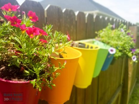 rainbow painted plastic nursery pots mounted on fence with colorful flowers, unique garden art