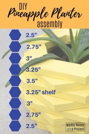 diy pineapple planter woodworking tutorial assembly instructions
